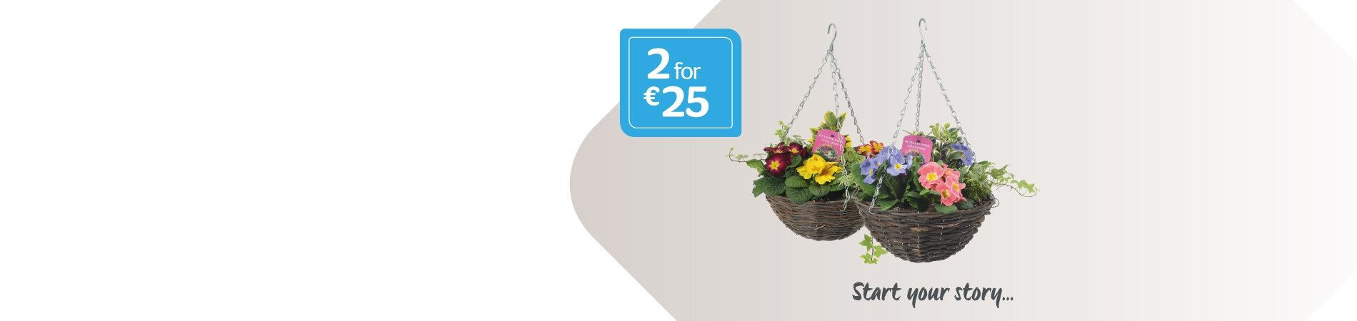 Hanging Baskets 2 for €25