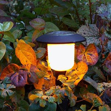 Outdoor Lighting & Lighting | Woodieu0027s azcodes.com