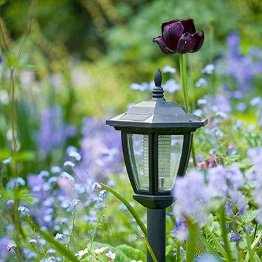 Outdoor Lighting Lighting Lightbulbs Woodie S