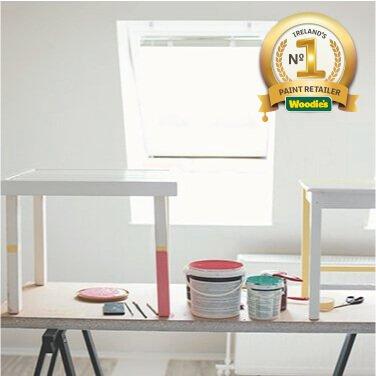 Furniture Paint