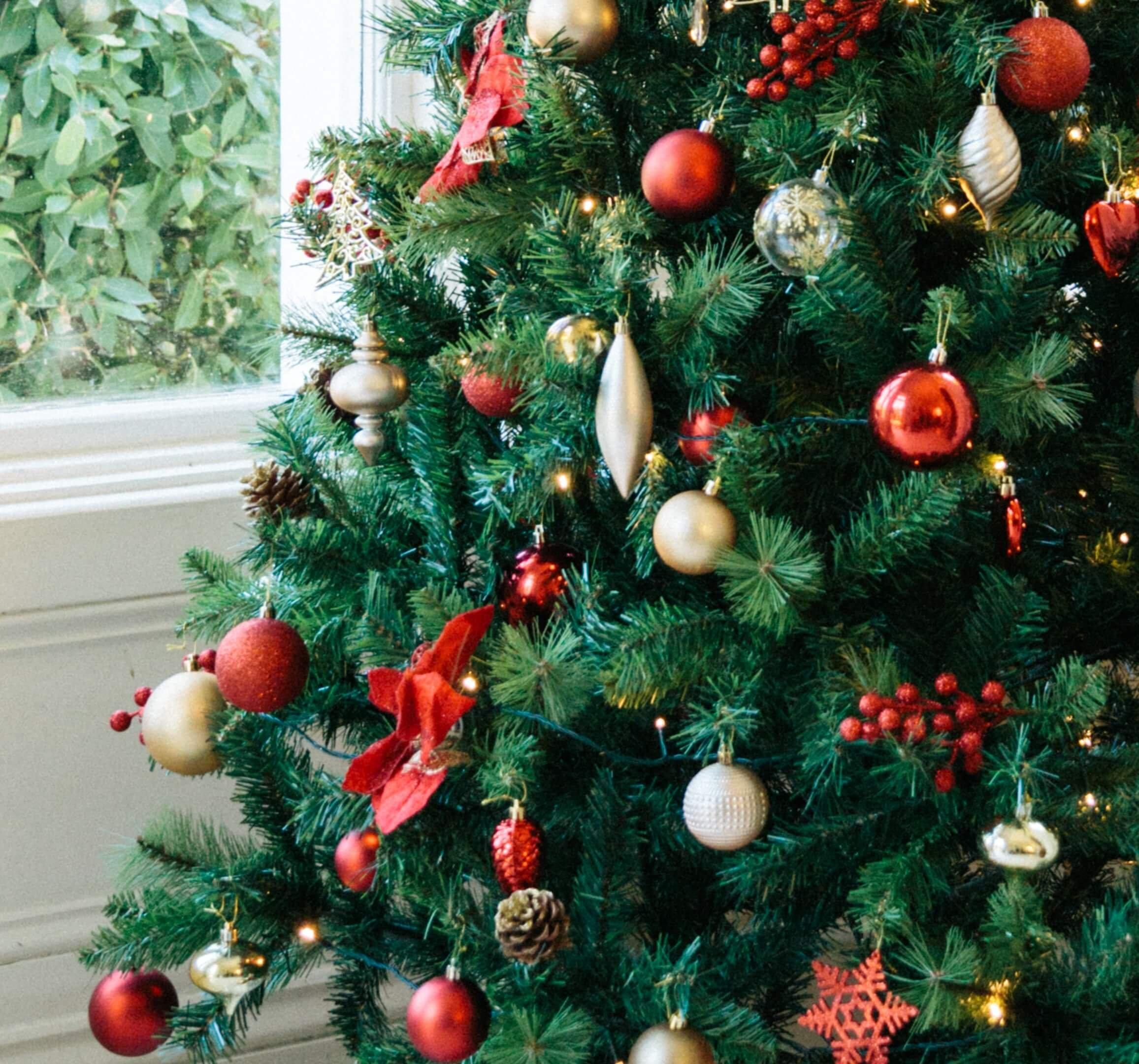 Christmas Trees | Woodie\'s